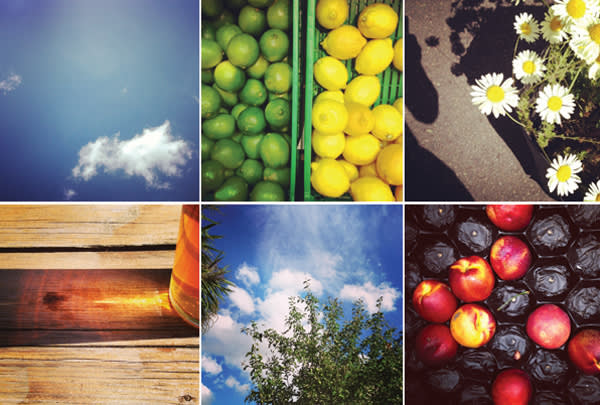 Montage of Instagram images taken by Rick Pushinsky; Getty