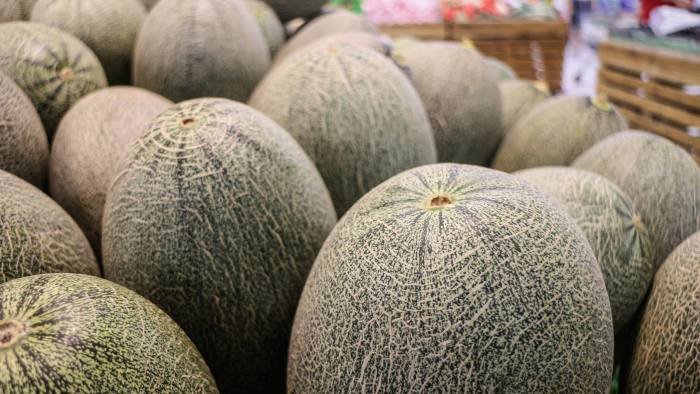 Full frame pile of cantaloupe melons in a supermarket in horizontal 3:2 format.