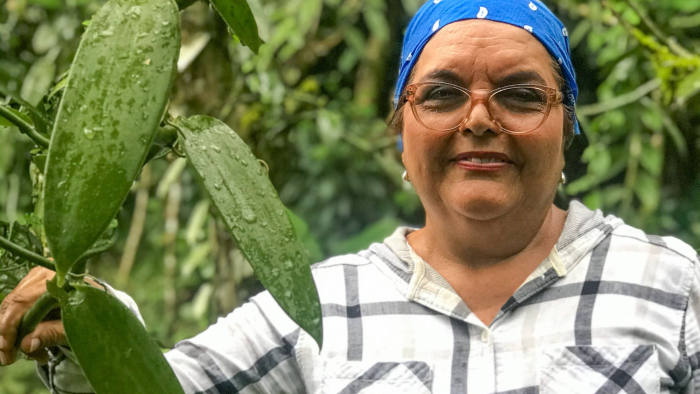 """Amelia Paniagua-Vásquez of the University of Costa Rica at a vanilla plantation in Guápiles, Costa Rica, January 8, 2020. She has helped pioneer the cultivation of the plant in agroforestry systems on previously deforested land. """"Agroforestry provides sustainability over time and helps combat climate change,"""" she says. Photo by FT journalist Jude Webber."""