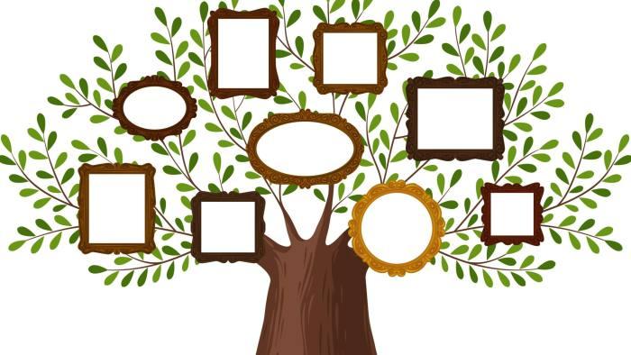 KDPBGT Genealogical family tree with picture frames. Pedigree, genealogy, lineage, dynasty concept. Vector illustration