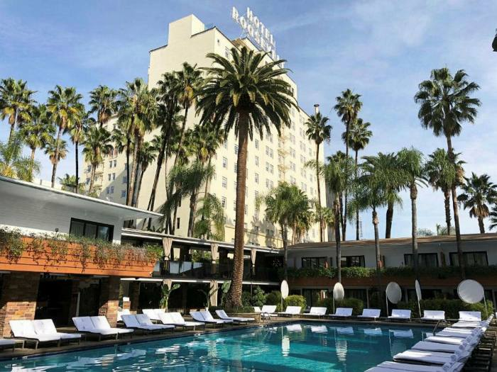 A pool over which loom palm trees