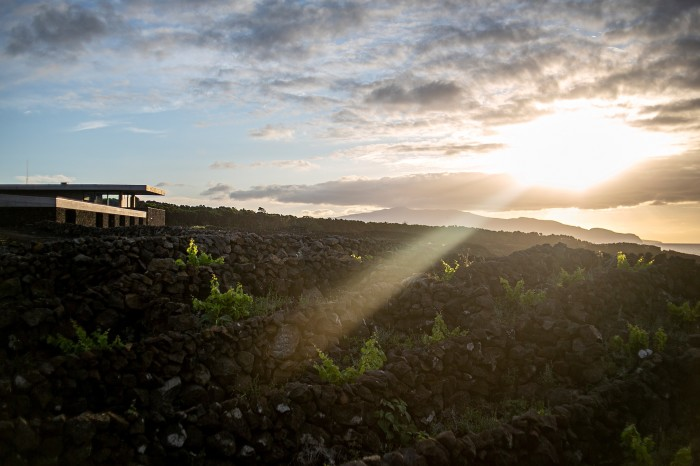 """The Azores Wine Company's new winery """"emerges from the landscape like aStone Age spaceship"""""""