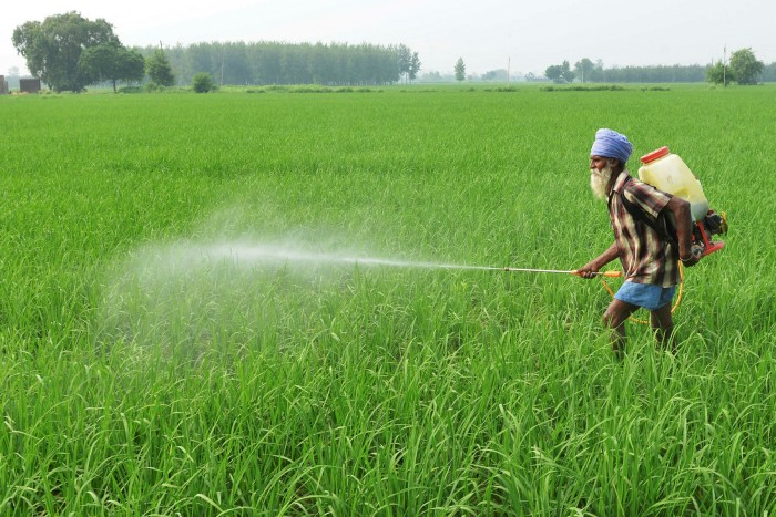 An Indian farmer sprays crops with insecticide
