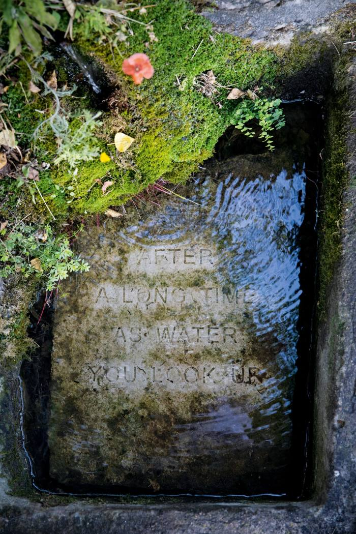 An extract from WS Merwin's The Biology of Art carved into a submerged stone