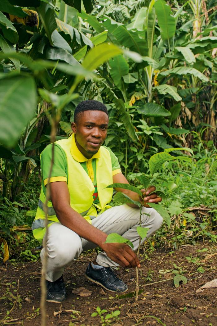 Godfred, a Sugi planter in Cameroon