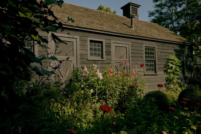 Needleman's garden, where last year she grew her herbs among vegetables and cutting flowers