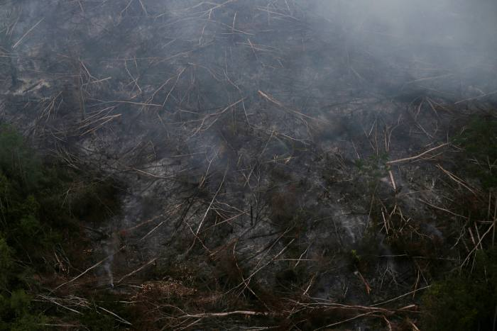 A tract of Amazon jungle burns as it is cleared by farmers in Itaituba, Para, in 2019